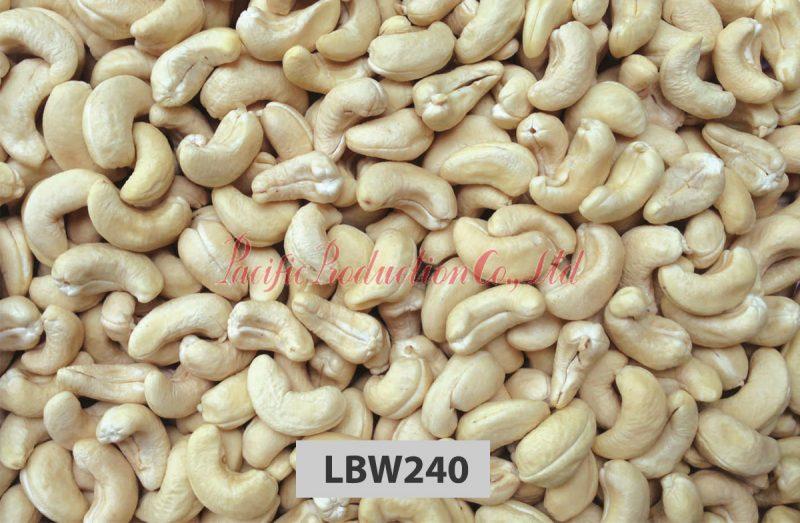 vietnam cashew nut LBW240
