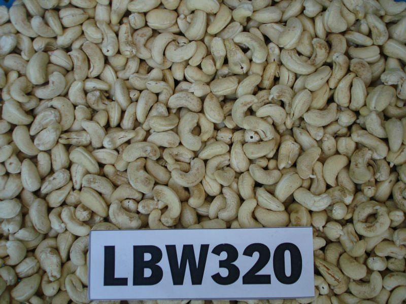 vietnam-CASHEW-NUT-KERNEL-LBW320
