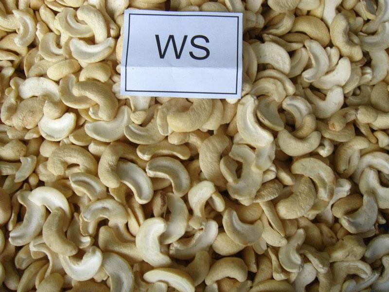 vietnam-Cashew-WS