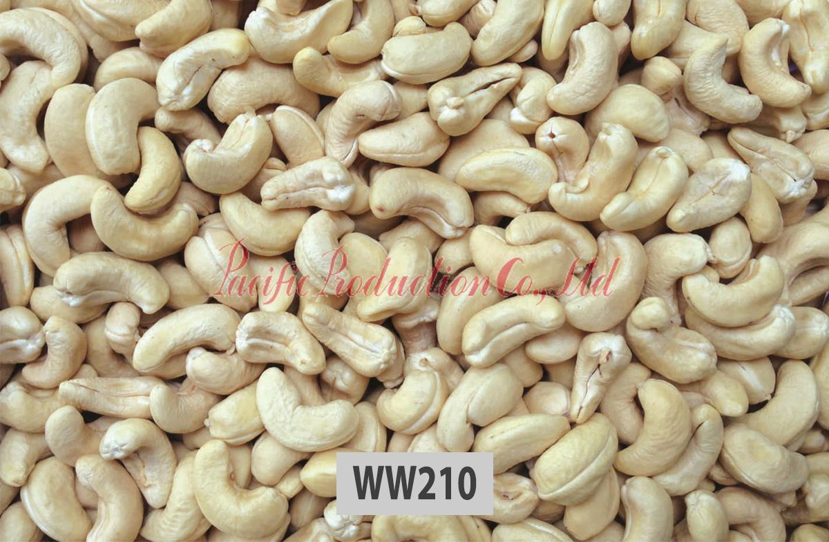 vietnam-cashew-nut-ww210